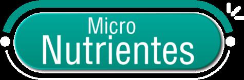 Micro Nutrientes