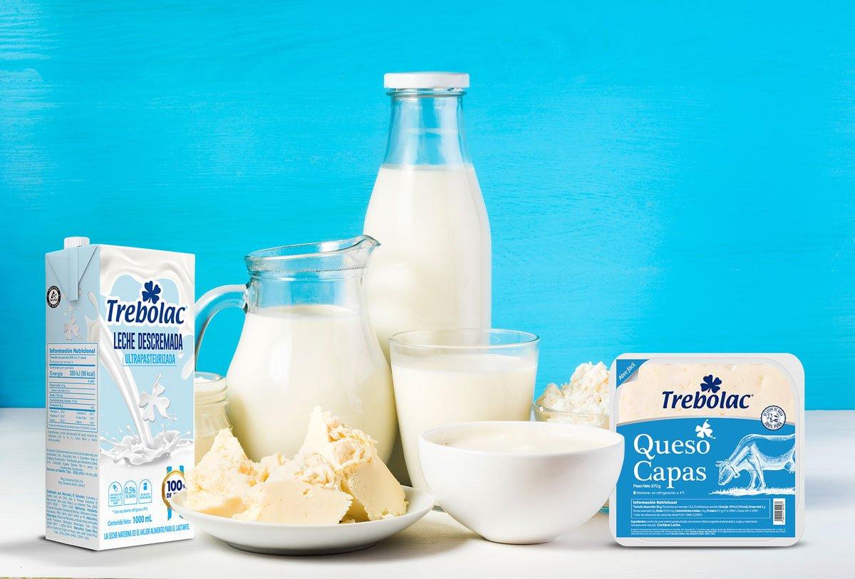 ¿Los lácteos son fermentados?